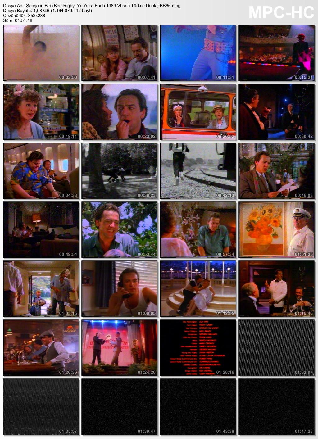 Şapşalın Biri (Bert Rigby, You're a Fool) 1989 Vhsrip Türkce Dublaj BB66 - barbarus