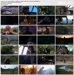 Son Savaş (Bat21) 1988 Bluray 1080p.x264 Dual Türkce Dublaj BB66 1